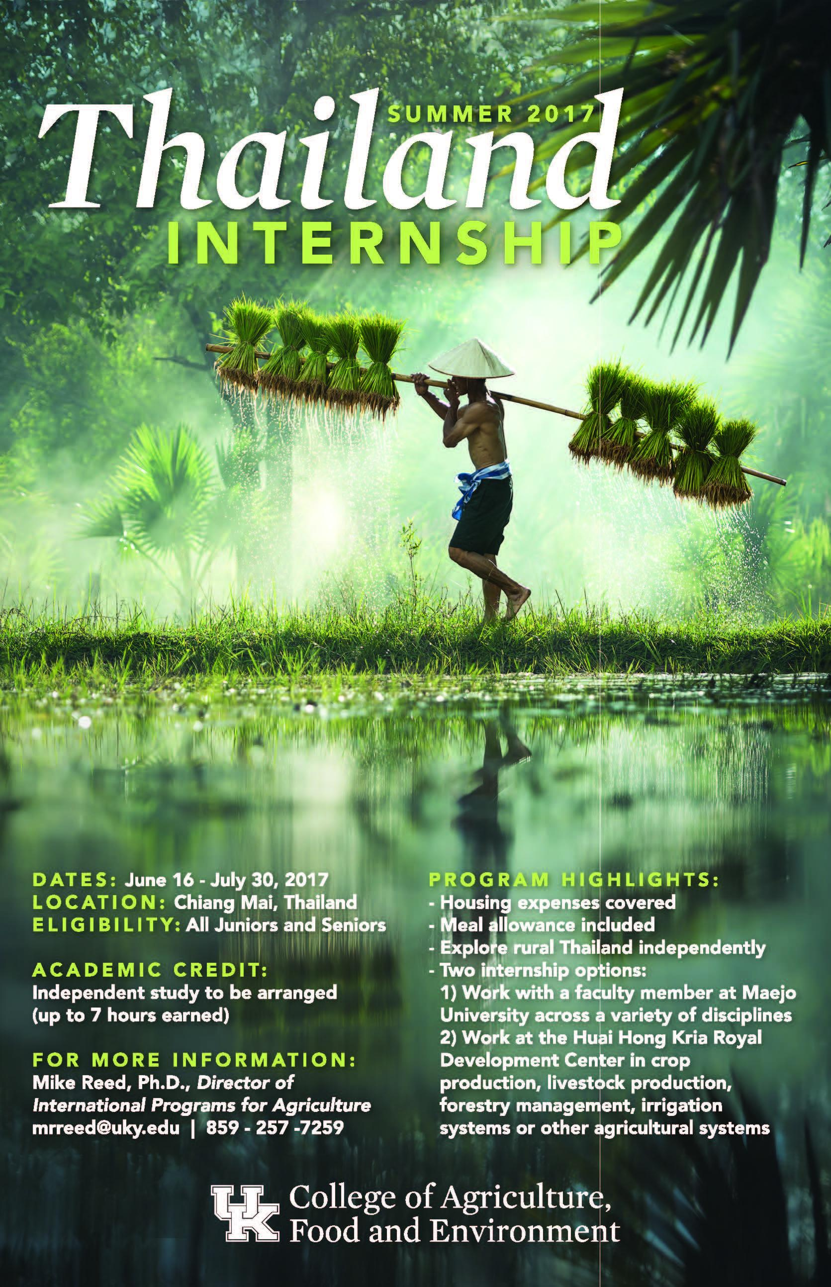 Thailand Summer 2017 Internship