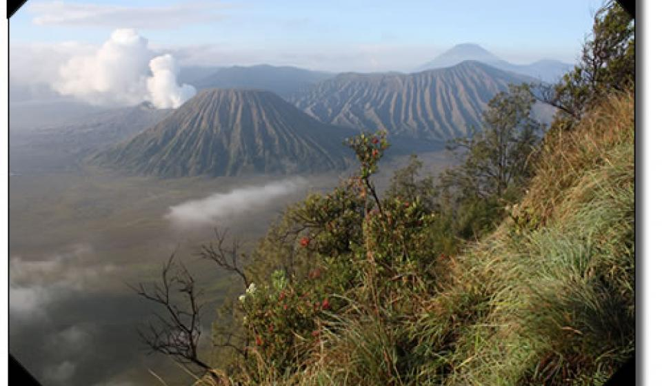 Mt. Bromo volcano, Java, Indonesia.